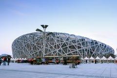 Pechino il bird& x27; nido di s Immagine Stock