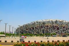 Pechino nido nazionale uccello/dello Stadio Olimpico s Fotografia Stock Libera da Diritti