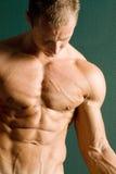 Pecho atlético muscular del constructor de carrocería Fotos de archivo libres de regalías