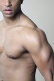 Pecho y brazo musculares masculinos del hombro Fotos de archivo libres de regalías