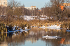 The Pechora River Stock Photography