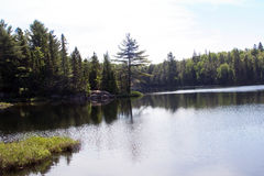 Free Peck Lake, Algonquin Provincial Park 2 Royalty Free Stock Photography - 58795307