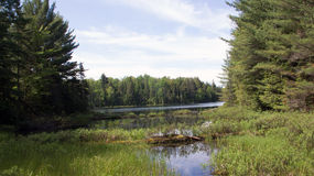 Peck Lake, Algonquin Provincial Park 5 Stock Photo