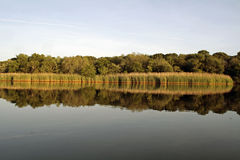 Peconic River Water Reflection Stock Image