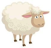 Pecore Illustrazione di Stock