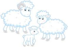 Pecore, agnello e ram Fotografie Stock Libere da Diritti