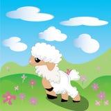 Pecore, agnello, Toon, fiori, cielo, prato, Immagini Stock Libere da Diritti