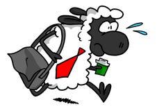 Pecore bianche che precipitano per lavorare Fotografia Stock Libera da Diritti