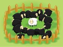 Pecore bianche nella moltitudine di pecore nere (di fronte a  illustrazione di stock
