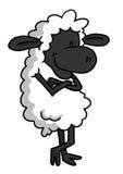 Pecore bianche nella posa di rilassamento Fotografie Stock Libere da Diritti
