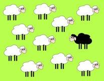 Pecore in bianco e nero Immagini Stock