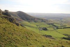 Pecore in colline di Pentland vicino ad Edimburgo, Scozia Fotografia Stock Libera da Diritti