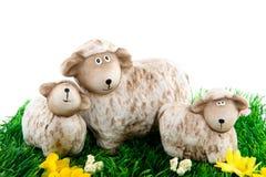 Pecore con gli agnelli Fotografie Stock