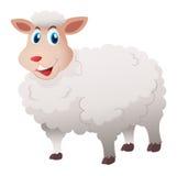 Pecore con pelliccia bianca Fotografia Stock Libera da Diritti