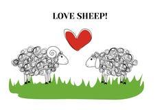 Pecore di amore Fotografie Stock