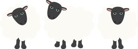 Pecore di conteggio Fotografia Stock