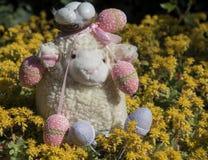 Pecore di Pasqua Fotografia Stock Libera da Diritti