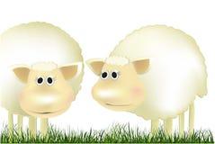 Pecore di vettore Immagini Stock Libere da Diritti