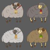 Pecore differenti con la raccolta delle campane Fotografie Stock