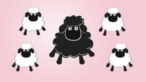 Pecore nere nella famiglia Immagini Stock