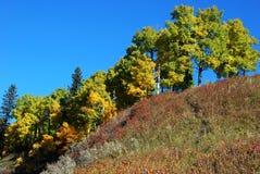 Pecore River Valley in autunno Immagini Stock Libere da Diritti