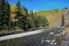 Pecore River Valley in autunno fotografie stock libere da diritti