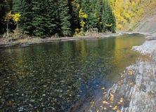 Pecore River Valley in autunno Fotografia Stock Libera da Diritti