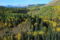Pecore River Valley in settembre immagini stock libere da diritti