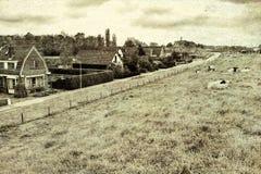 Pecore sulla diga protettiva in Olanda Fotografia Stock Libera da Diritti