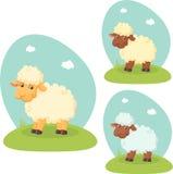 Pecore sveglie Immagini Stock Libere da Diritti