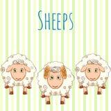 Pecore sveglie del fumetto dell'illustrazione di vettore Fotografia Stock Libera da Diritti
