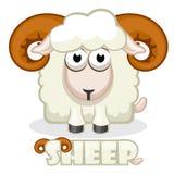 Pecore sveglie del quadrato del fumetto Fotografie Stock Libere da Diritti