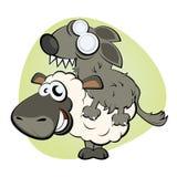 Pecore in vestiti del lupo Fotografia Stock Libera da Diritti