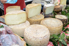 Pecorino cheese of Sardinia Royalty Free Stock Photos