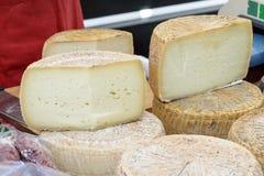 Pecorino cheese of Sardinia Royalty Free Stock Photo