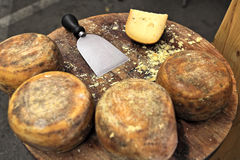 Pecorino cheese on wooden table. Royalty Free Stock Photos