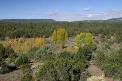 Pecos Pueblo stock image