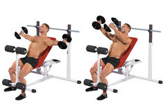 Pectoral interior exercise Royalty Free Stock Photography