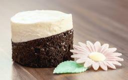 Pedaço de bolo imagem de stock royalty free