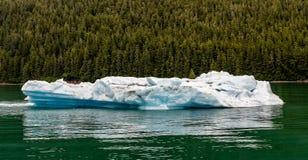 Pedaço de flutuação do iceberg em Alaska, EUA foto de stock