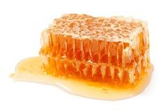 Pedaço do favo de mel fotos de stock