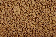 Pedaços frescos do alimento de gato fotografia de stock