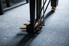 pedal Imagen de archivo libre de regalías