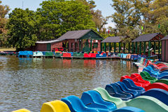 Pedal boats on a lake, Buenos Aires Argentina