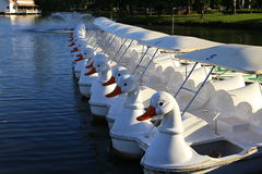 Pedal boats Stock Images