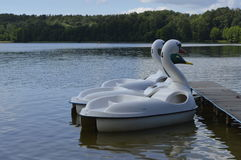 Pedal boats. Swans and duck, moored to a wooden bridge Stock Photo