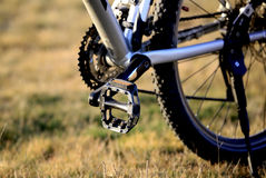 Pedal des Fahrrades Stockfoto