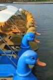 Pedalboote, die in das LAK schwimmen lizenzfreies stockfoto