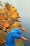 Pedalboote, die in das LAK schwimmen stockfotografie
