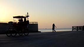 Pedaling στο λιμάνι στο ηλιοβασίλεμα απόθεμα βίντεο
